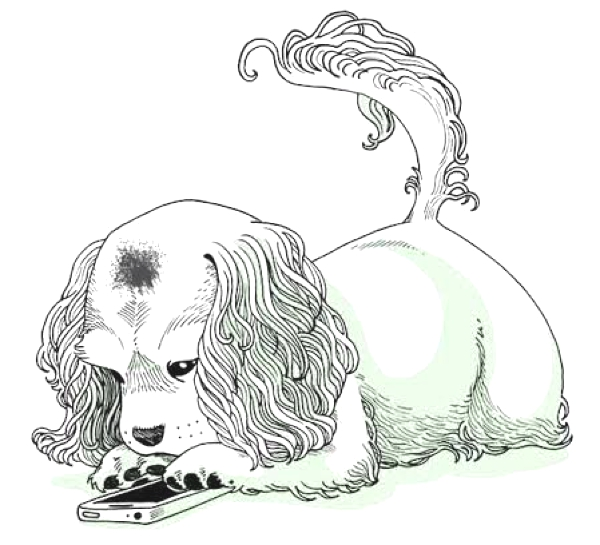 Prince Spot dog drawing