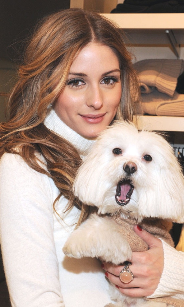 Olivia Palermo and dog portrait