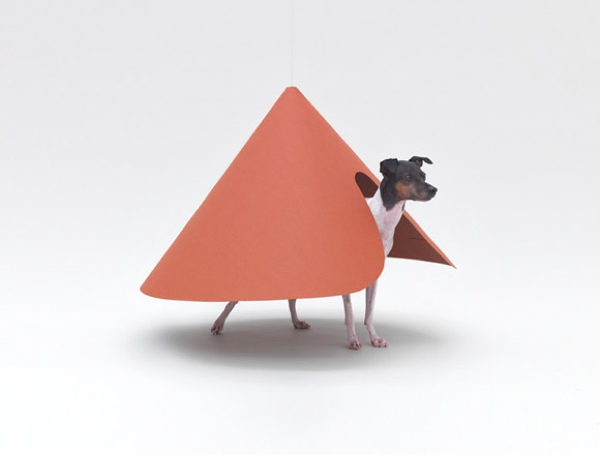 by HARA DESIGN INSTITUTE for JAPANESE TERRIER