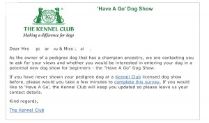 Kennel club Invite for dog show