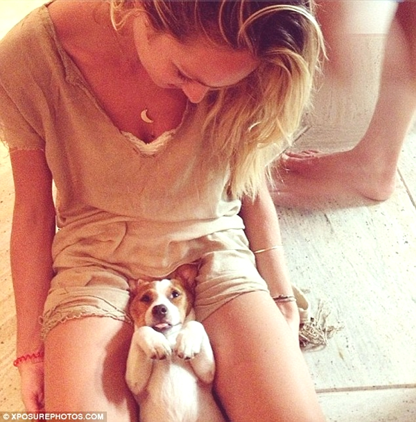 Candice Swanepoel puppy jack Russel