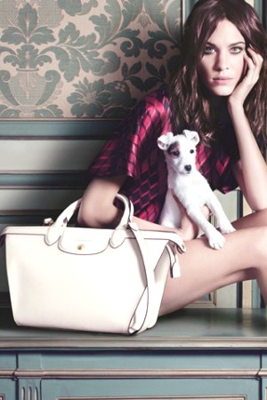 dogs in ads- Alexa Chung