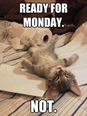 Cat not ready for Monday