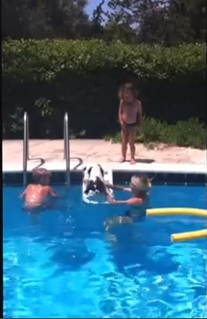 Spot in the swimming pool