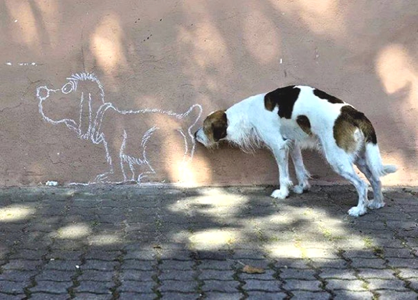 dog smelling painting