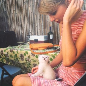 Olivia Benson Taylor Swift cat- Inspiring pet names