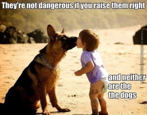 quote dogs