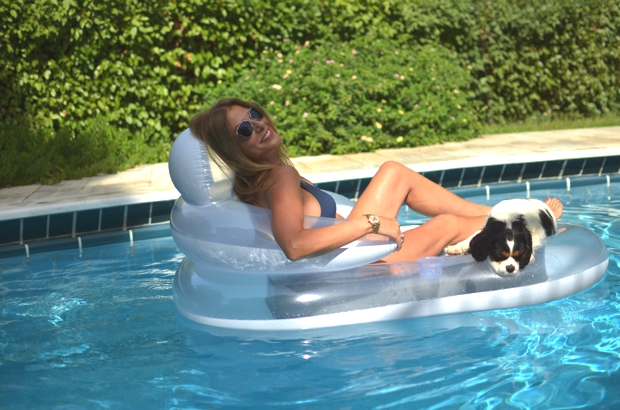 Cavalier King Charles floating swimming pool chair