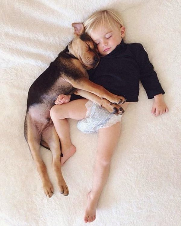 Dog and Child | Sleeping beauties01
