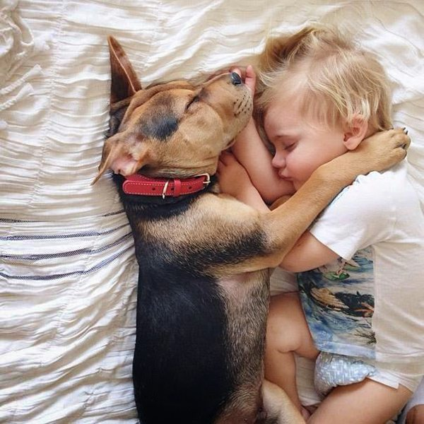 Dog and Child | Sleeping beauties02