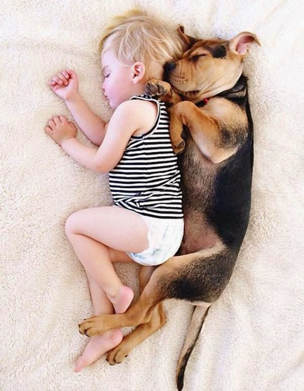 Dog and Child | Sleeping beauties06