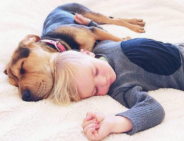 Dog and Child | Sleeping beauties07