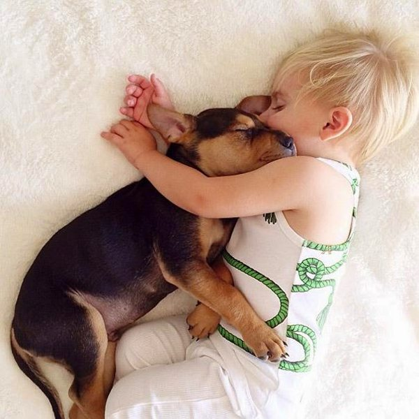 Dog and Child | Sleeping beauties08